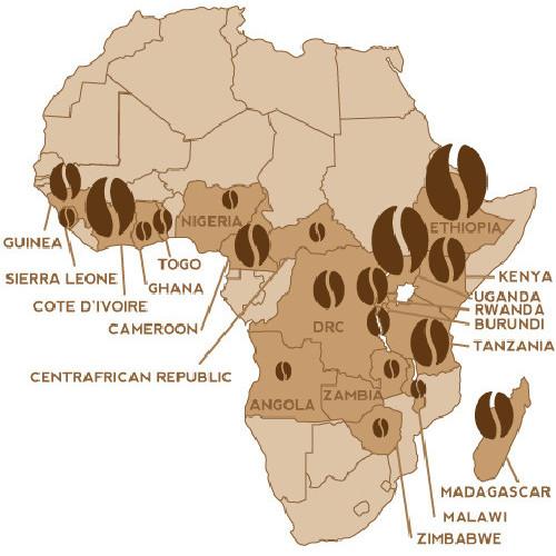 Nestlè aumenta i finanziamenti ai coltivatori di caffè