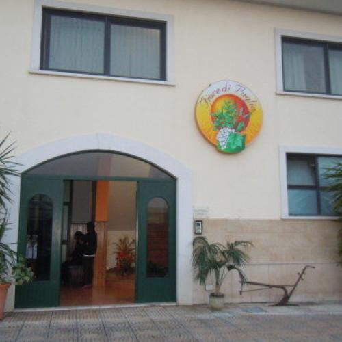 Tour nell'Azienda Fiore di Puglia