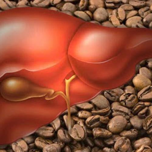 Caffè e the nemici della steatosi epatica