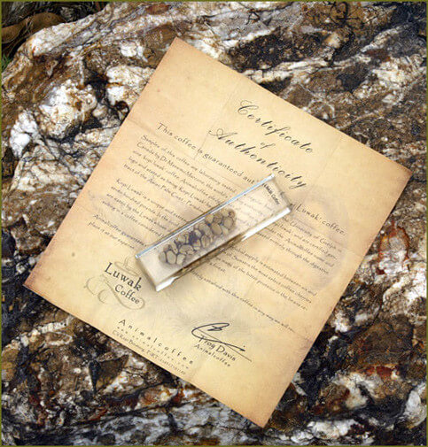 Certificato-kopi-luwak
