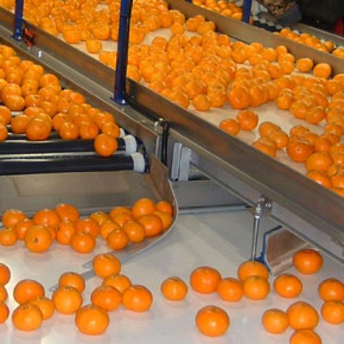 Accordo interprofessionale per i succhi di frutta agli agrumi