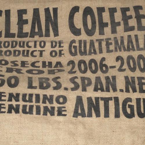 L'Italia in aiuto dei coltivatori di caffè del Guatemala