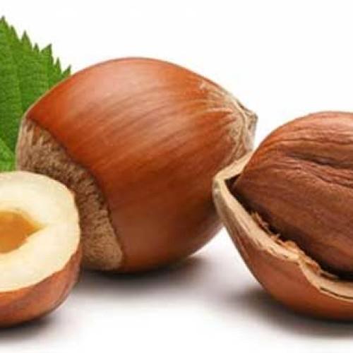 Non solo Turchia. Ferrero compra le nocciole in Lazio