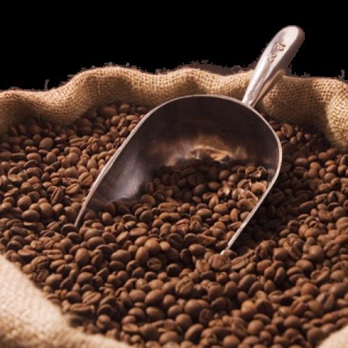 Prevista per il 2016 la ripresa del mercato del caffè in Africa