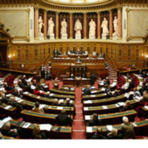 Francia. Bocciata la tassa sull'olio di palma