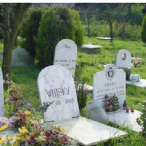 Il vending entra nel progetto del cimitero per gli animali