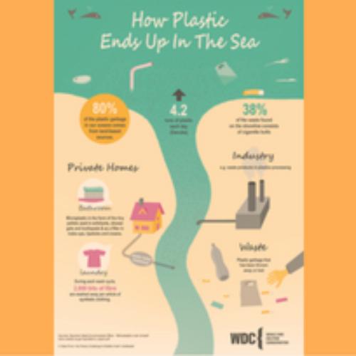Meno plastica nel mare con Brita e WDC