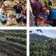 Viaggio in Centro America di CSC – Caffè Speciali Certificati