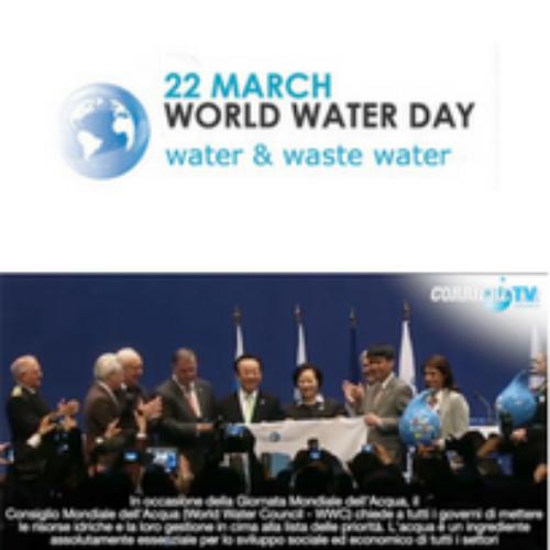 Oggi è la Giornata Mondiale dell'Acqua