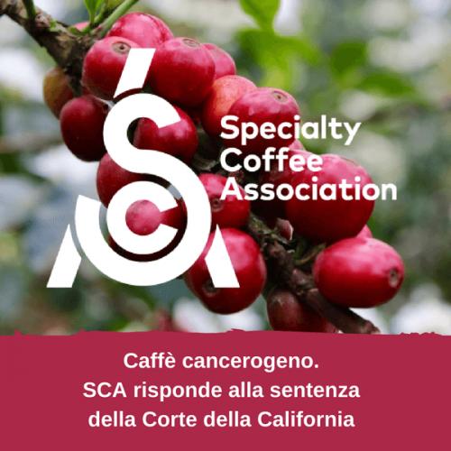 SCA – Specialty Coffee Association risponde alla Corte della California