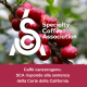 SCA – Specialty Coffee Association risponde alla Corte della California