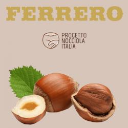 Progetto Nocciola Italia: positivi i risultati del primo semestre