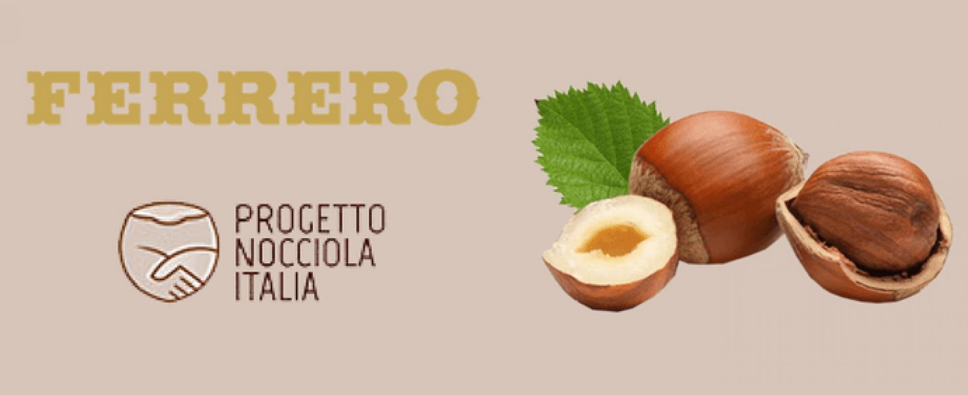 """Ferrero. Le nocciole irpine entrano nel """"Piano Nocciola Italia"""""""