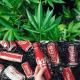 La Coca-Cola alla cannabis potrebbe diventare realtà