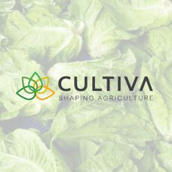 Da Cultiva un'insalata ready-to-eat totalmente sostenibile