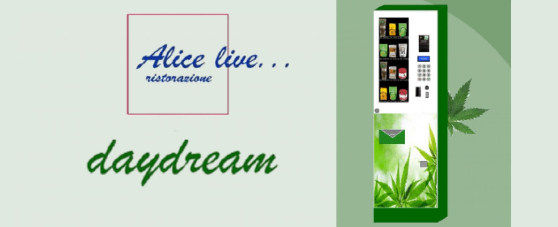 Alice Live Ristorazione entra nel mondo della cannabis legale