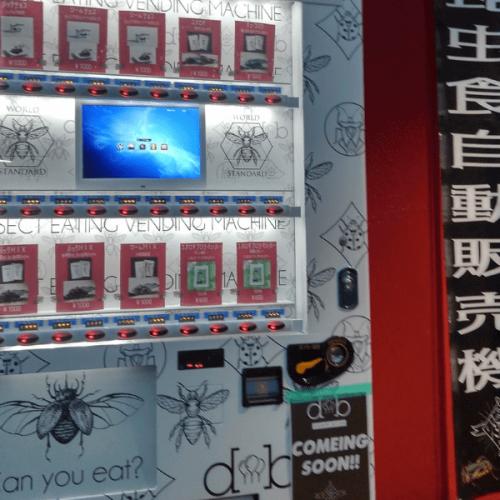 Successo a Kumamoto per la vending machine di insetti-snack