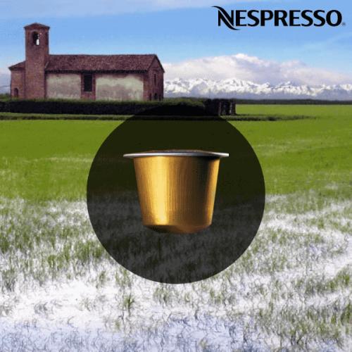 Nel 2018 Nespresso dona 420 quintali di riso al Banco Alimentare