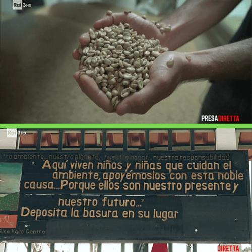 Costarica. La rivoluzione green del caffè a zero emissioni