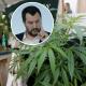 Nessuna chiusura per i punti vendita di cannabis light